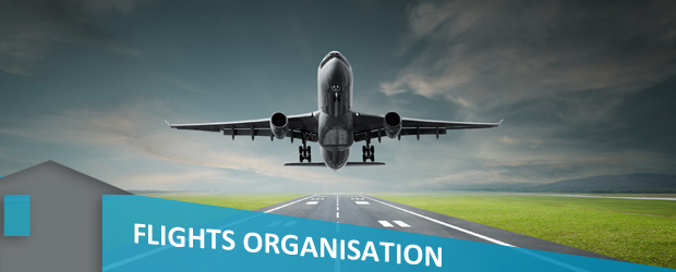 flights organisation banner